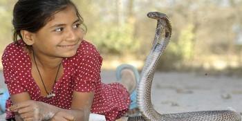 snake-1415353465