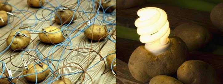 potato-bg20141129053358