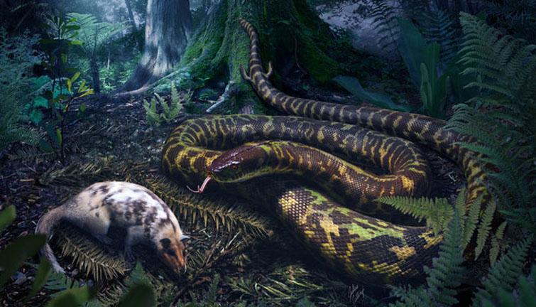 38288-1-snake