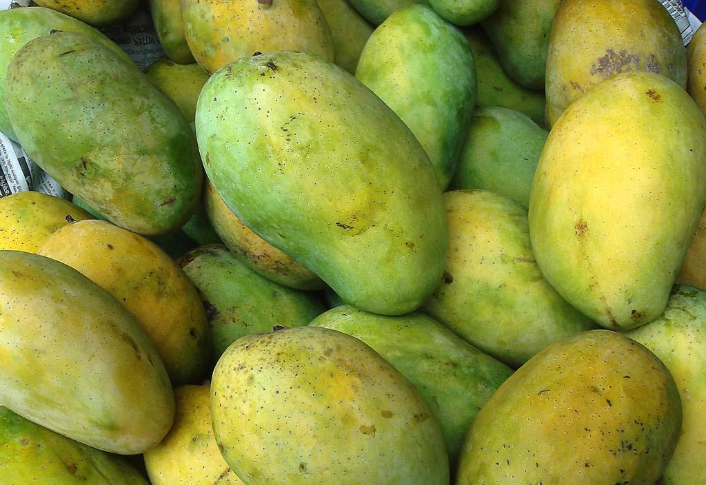bangladeshi-mango-photos-11386046687