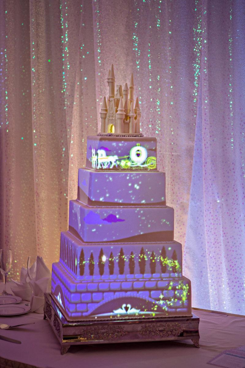 Disney-Cake0008x.jpg[1]