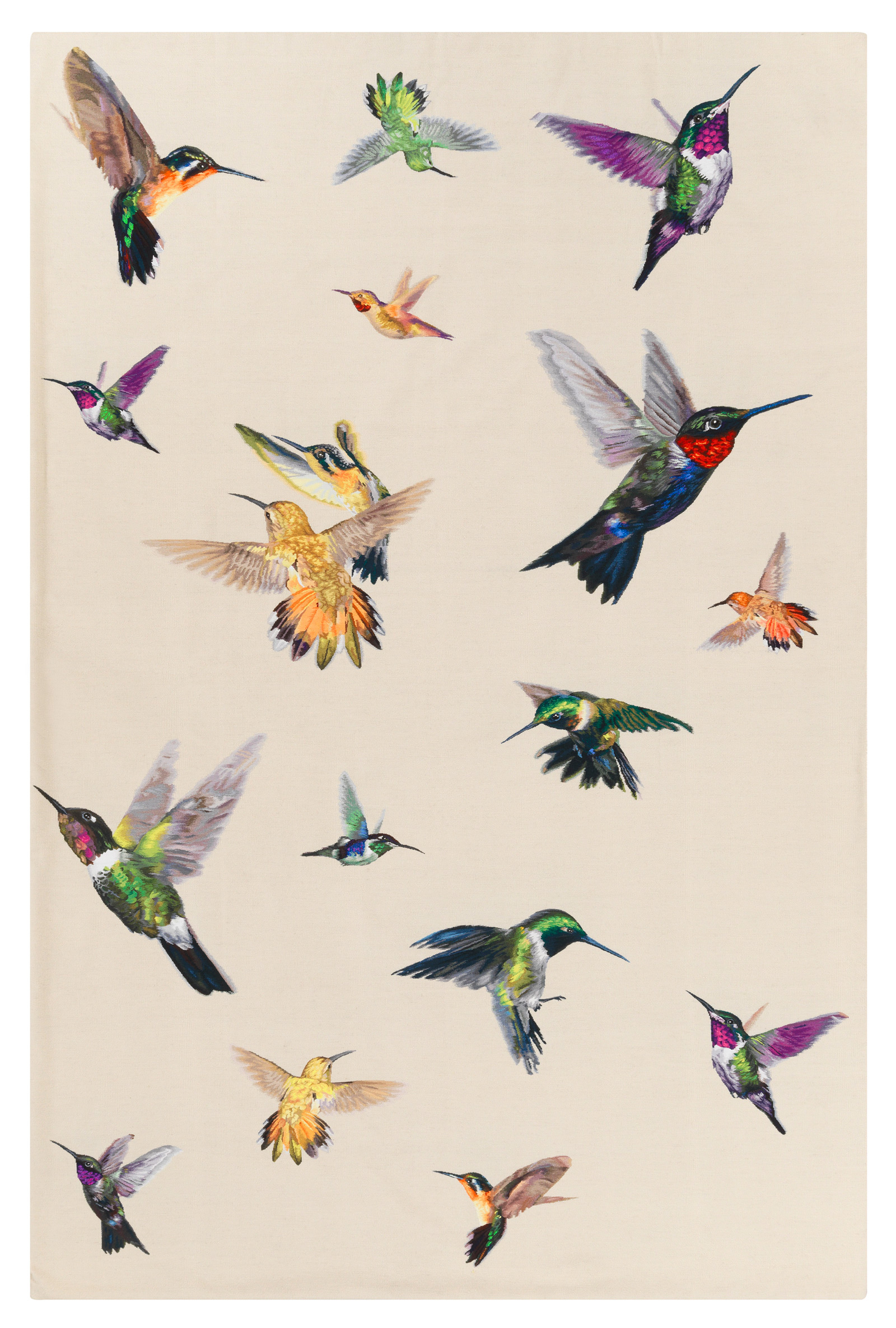 dc_amq_hummingbird_ivory_f_2