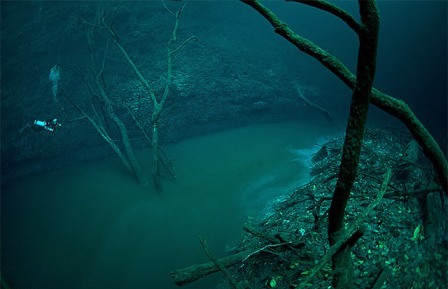 under-water-river-pic5