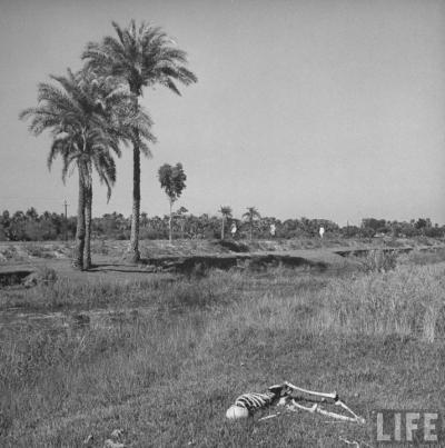 মনন্তর-১৯৪৩