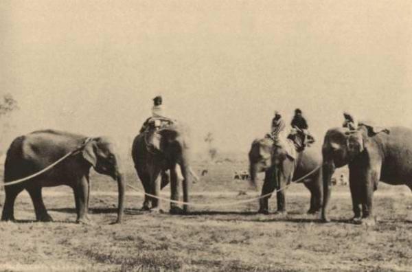 1880-Pilkhana-1880
