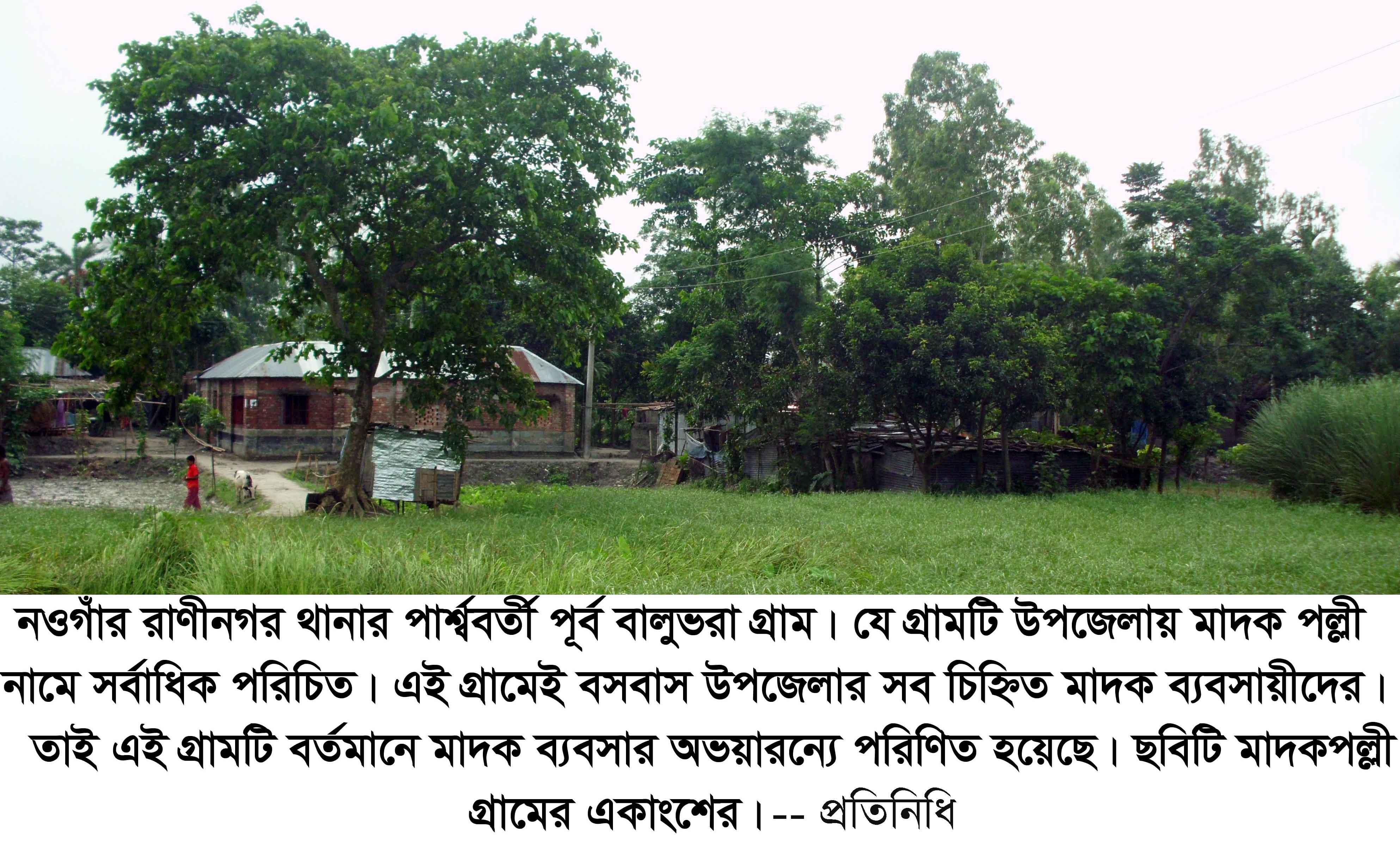 Picture Raninagar Madok Polli 03.07.15