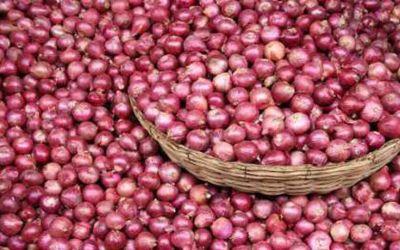 Onion1440581829
