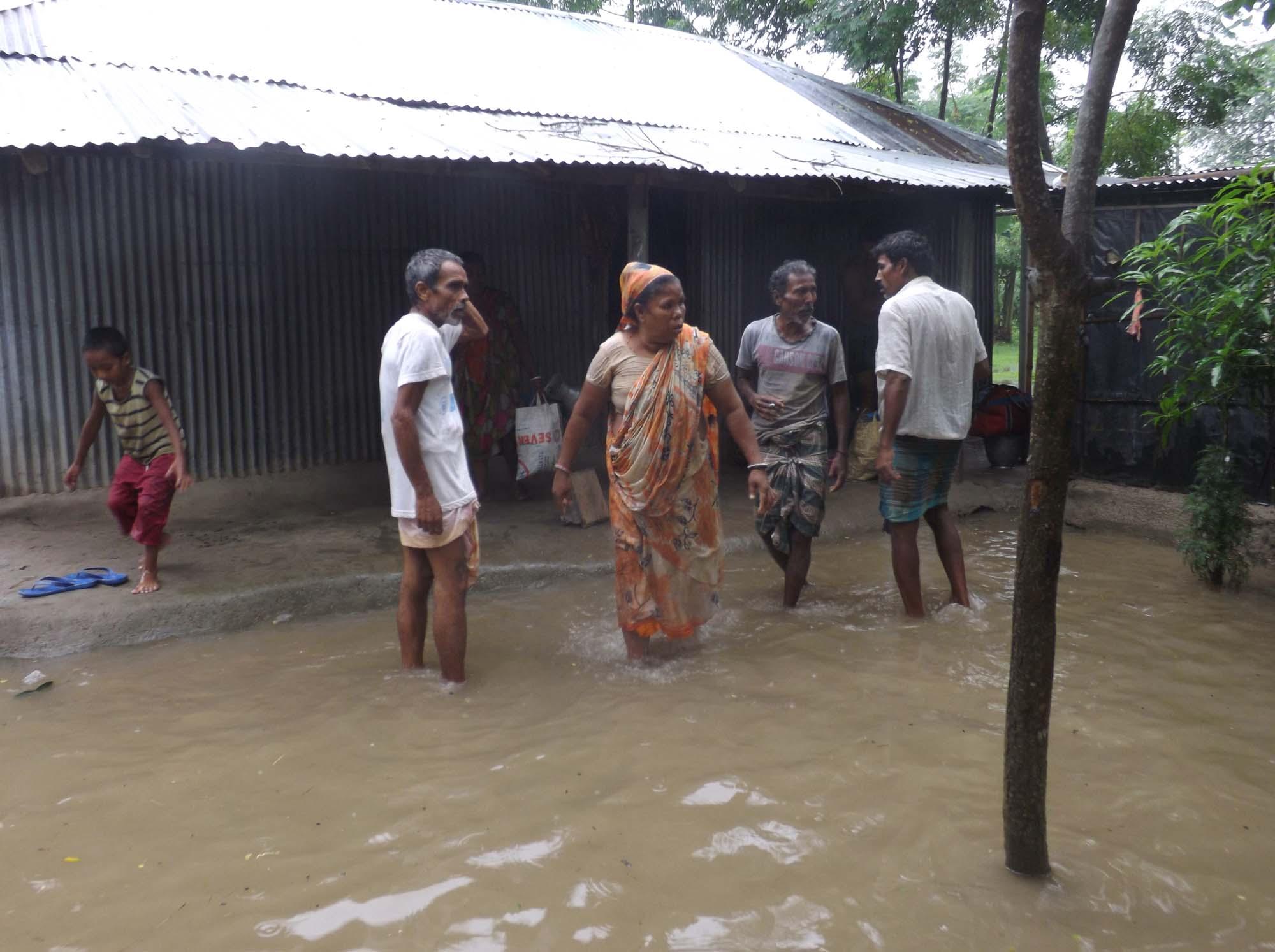 Thakurgaon Flood pic