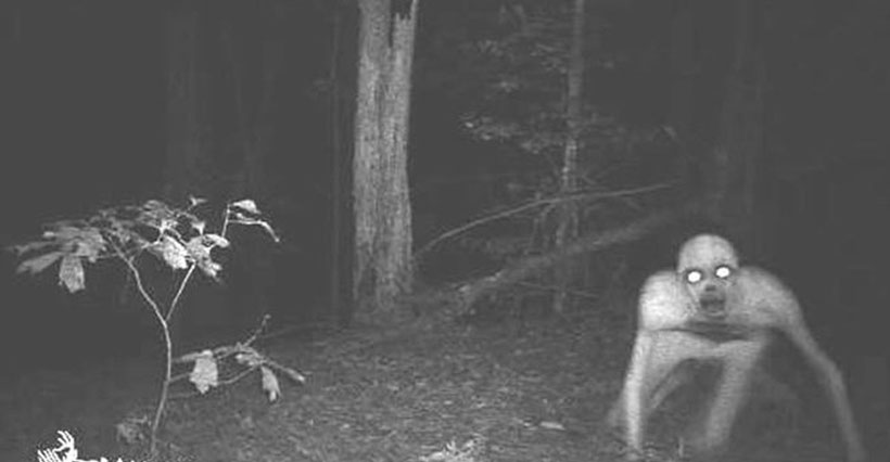 creepy-trail-pictures