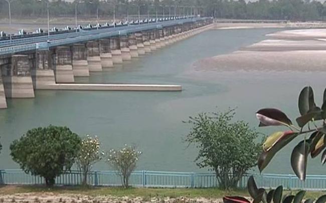 rangpur_65034