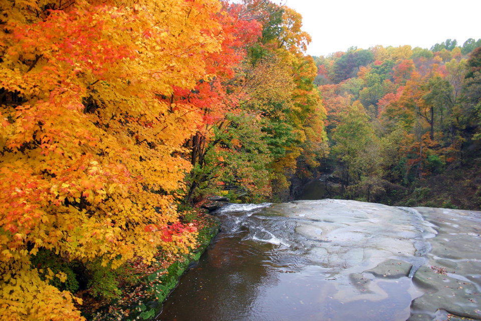 Trees in fall colors at edge of waterfall