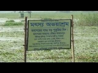 Dinajpur-Barapukuria Machh Chash-_0001