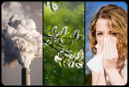 asthma-s7-asthma-causes