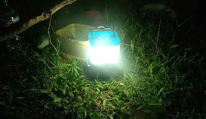 SALt-Lamp-2