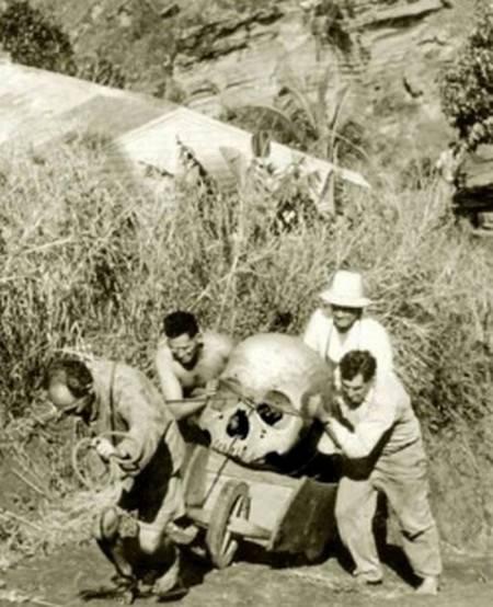 Giant-Pitcairn-Island-New-Zealand-in1934