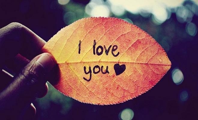 i love you_95818