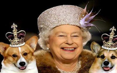 Queen1456402069