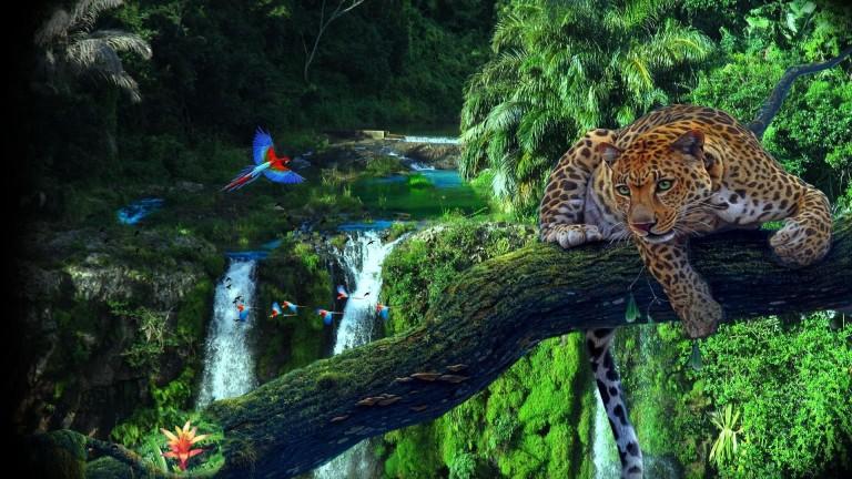 amazon-jungle-wallpaper-768x432