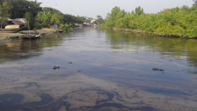 141210182932_bangladesh_oil_spill__640x360_g.m.masumbillahwcs