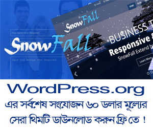 SnowFall, Video WordPress Theme