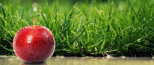 Apple-Grass-1200x1920