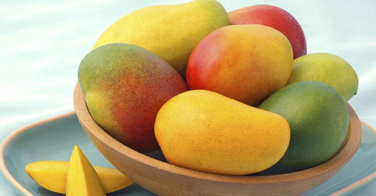 Mango20160523070917