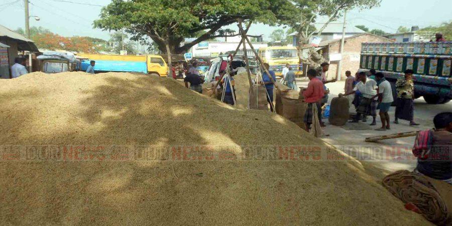 Pic Rice Raninagar 20.05