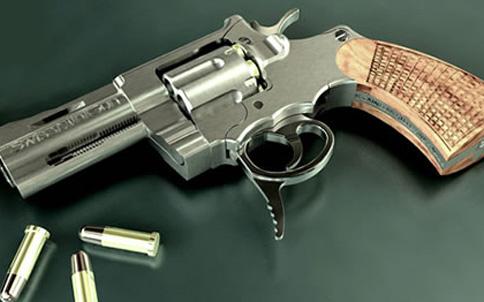 swiss-mini-gun
