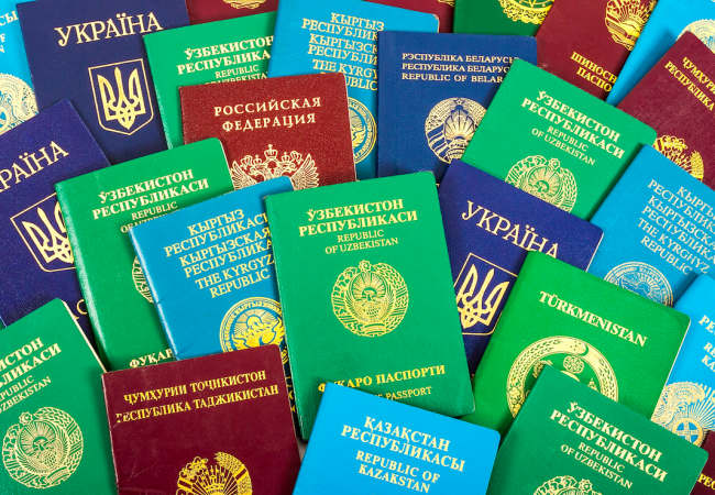 why-passports-come-in-4-standard-colours