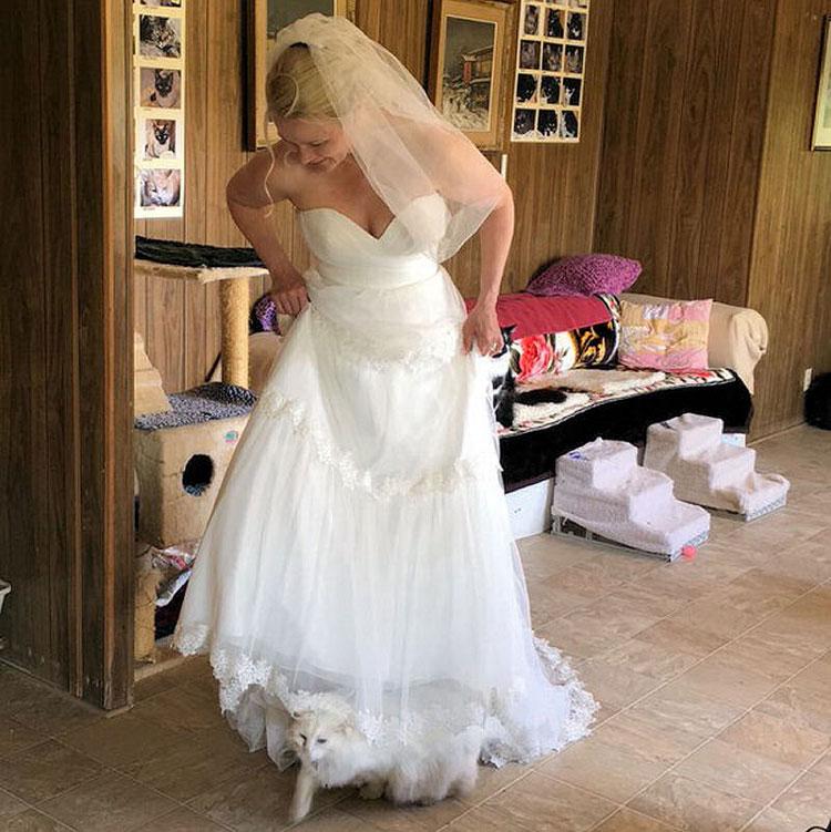 wedding-220160617100157