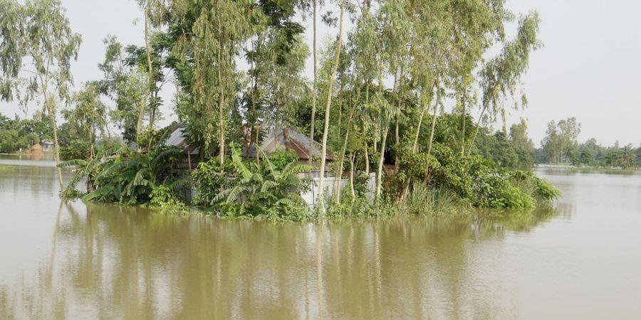 Kurigram Flood Situation photo 10.07.16