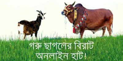 online-cow20160824225127