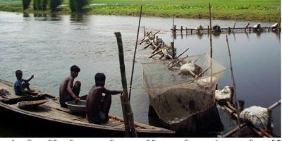 pic-fish-raninagarnaogaon-25-9-16