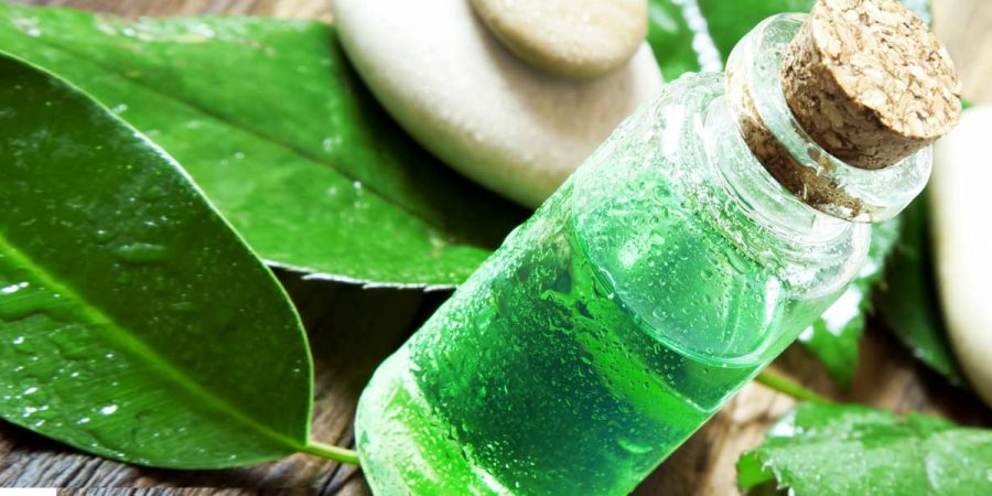 18-amazing-benefits-of-tea-tree-oil-for-skin-hair-and-health_0