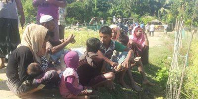 rohingya_myanmar_rakhain_32153_1480254063