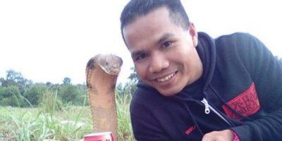 snake_hasin_malasian_31276_1479569936