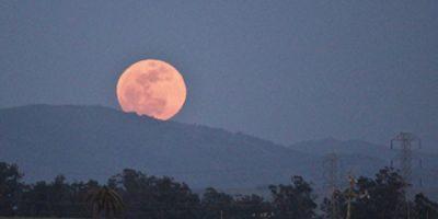 super-moon_30685_1479118047-1