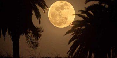 super_moon_30335_1478838781