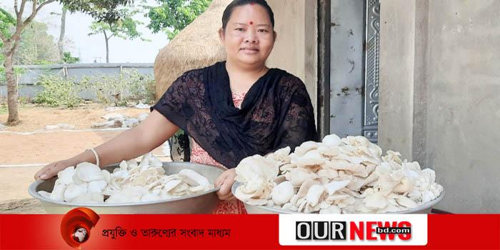 খাগড়াছড়ি ঠাকুরছড়ার নারী উদ্যোক্তা নিপু ত্রিপুরা মাশরুম চাষে স্বাবলম্বী